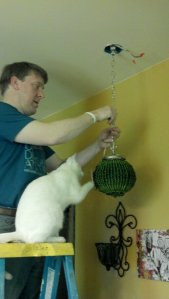 Kitten helps hang a new fixture over the sink.